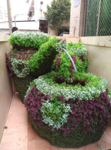 New Product Plastic PU Artificial Topiary Plant Grass pictures & photos