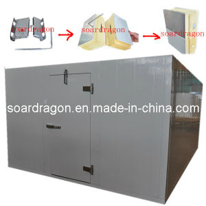 Standard Cold Storage Room Meat and Vegetable Storage (TQWR&TQWF) pictures & photos