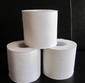 Recycled, Embossed Toilet Tissue Roll pictures & photos