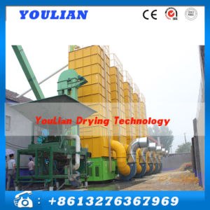 Different Capacity High Quality Grain Paddy Dryer pictures & photos