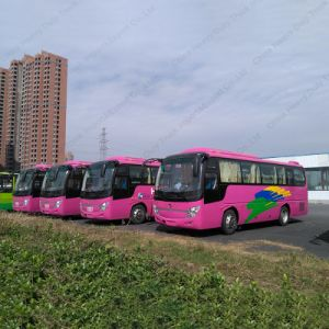 Professional Supply 42-50seats 10.5m Tourist Bus City Bus/Coach pictures & photos