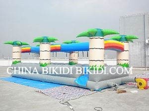 Inflatable Water Slide, Surf Slide (B4072) pictures & photos