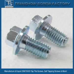 DIN7500d/E Thread Rolling Tap Tite Screws pictures & photos