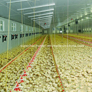 Poultry Farm Equipment for Poultry House pictures & photos