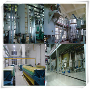 1-100 Tons/Day Rice Bran Oil Reining Plant/Oil Refinery Plant pictures & photos