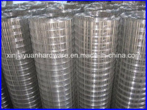 Building Material Galvanized Welded Wire Mesh pictures & photos