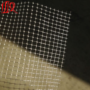 10g-60g Two Way Stretched Net pictures & photos