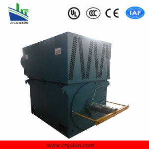 Yr High Voltage Motor. Winding Type High Voltage Motor. Slip Ring Motor Yr6301-4-2000kw pictures & photos