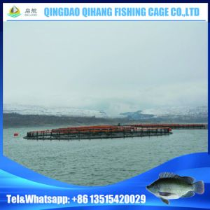 HDPE Floating Fish Farming Cage in Deep Sea for Aquaculture
