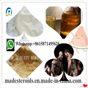 99% Purity 23239-88-5 Benzocaine Hydrochloride Powder for Skin Abrasions pictures & photos