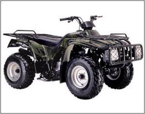 250CC ATV (ATV250S-1)