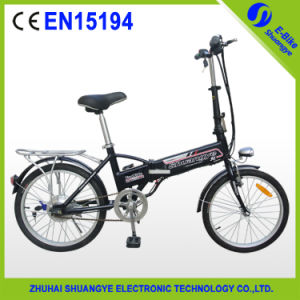 Hot Selling Model Cheap Folding Electric Bike Shuangye Produce pictures & photos