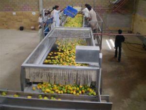5t/H Mango Pulp Production Line pictures & photos