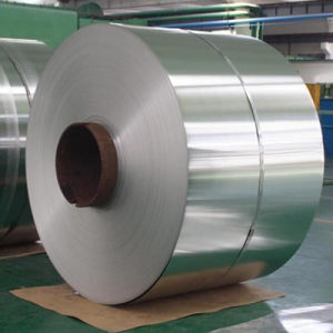 Galvanized Steel Strip pictures & photos