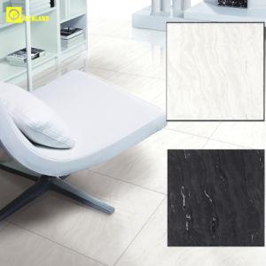 Foshan Homogeneous Tiles (6SK001) pictures & photos