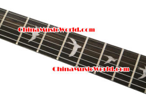 Prs Style / Afanti Electric Guitar (APR-057) pictures & photos