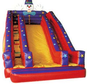 Fantastic Inflatable Bouncer That You Are Looking for pictures & photos