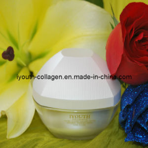 GMP, Top Collagen, Iyouth 100% Natural Taiwan Golden Milkfish Collagen Peptide Glittering & Whitening Cream Luxury pictures & photos