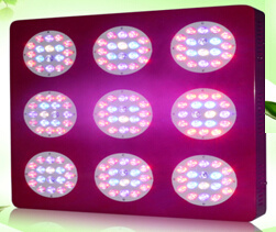 LED Grow Light for Aquarium