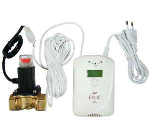 Mains Power + Battery Combustible Gas Detector with Electrovalve (AK-202V)
