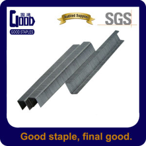 Stainess Steel Galvanized 10j U Typestaple (1010J)