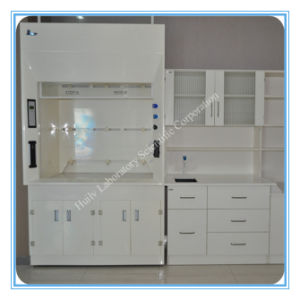 China New Design All Steel Structure Lab Fume Hood Fume Cupboard