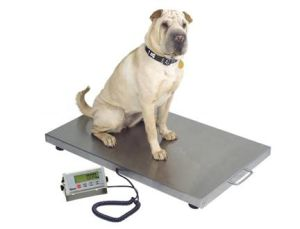 Veterinary Scale/ Pet Scale (VS) pictures & photos