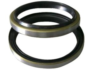 High Performance Dh Oil Seal for Preventing Dust pictures & photos