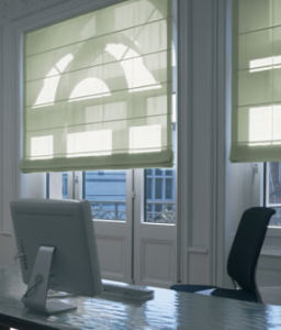 Window Shade Electronic Roman Blind pictures & photos