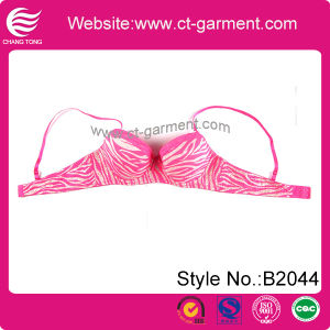 Women Hot New Design Lace Bra Underwear (B2044) pictures & photos