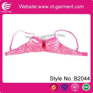 Women Hot New Design Lace Bra Underwear (B2044)