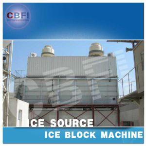 Italy Castel Solenoid Valve Cbfi Containerized Ice Block Machine (MBC200) pictures & photos
