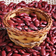 Chinese High Quality Black Kidney Bean pictures & photos