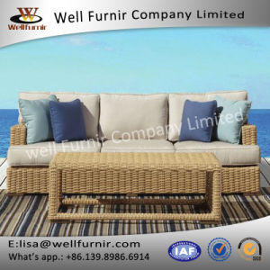 Well Furnir WF-17052 Wicker Sofa with Cushion pictures & photos