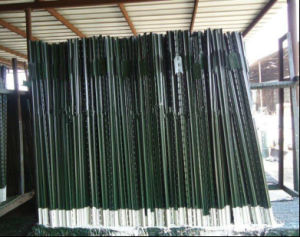 American Green Painted 6FT Length 1.33lb T Bar Post pictures & photos