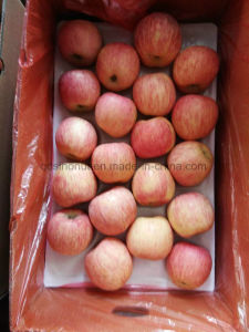 Red FUJI Apple From China pictures & photos