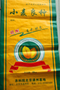 PP Woven Jumbo Bags PP Bags 50kg pictures & photos