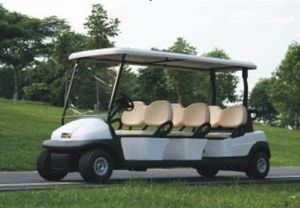 6 Passenger Golf Cart (CYS6)