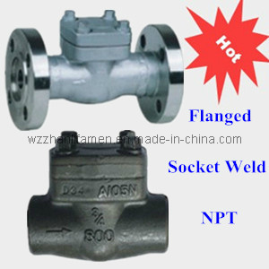 Forged Steel Check Valve (SW, NPT, Flanged)