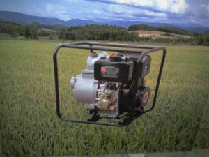 Diesel Water Pump for Agricultural Irrigation pictures & photos