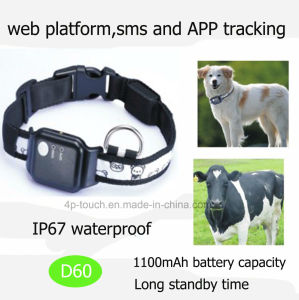 IP67 Waterproof Pet GPS Tracker with Long Standby (D60) pictures & photos
