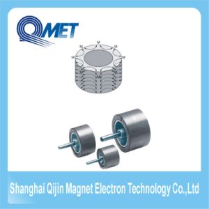 Multipole Anisotropic Ring Permanent Ferrite Magnet