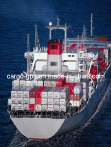 Free Shipping LCL Consolidation for Sea Shipment From Shenzhen to Fremantle/Auckland (COSCO/OOCL)