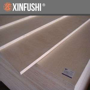 Poplar Core Birch Faced Plywood pictures & photos