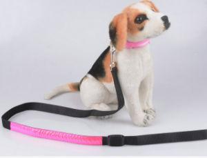 Best Selling Wholesale Light LED Dog Leash