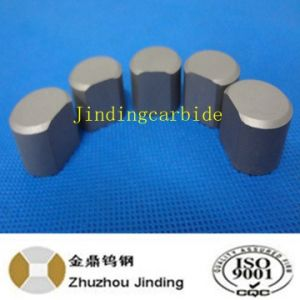 Tungsten Carbide Nail Die for Making Nail Tool pictures & photos