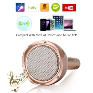 Portable Wireless Karaoke Microphone, Bluetooth Speaker Player for Music Playing Singing at Home KTV Party Travel Outdoor, Adapt to Apple iPhone Android. pictures & photos