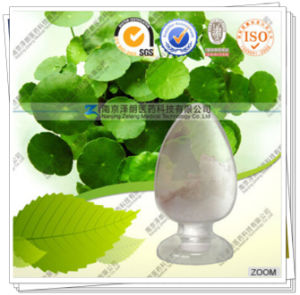 Factory Supply Gotu Kola P. E. Asiaticoside with Max Purity 95% pictures & photos