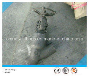 Cl1500 Forged A105n Y Threaded /Thread Globe Valve pictures & photos