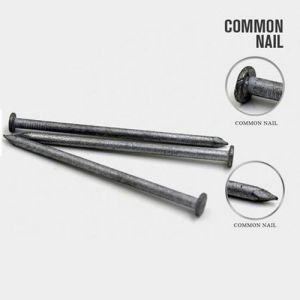 New Design Common Round Wire Nails with Nice Price pictures & photos